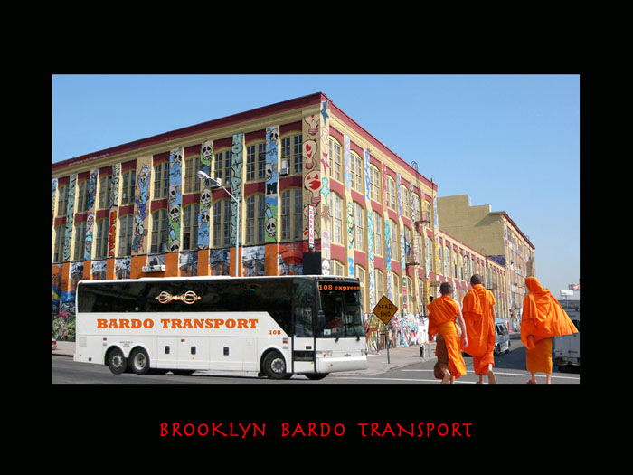 BROOKLYNBARDOTRANSPORT