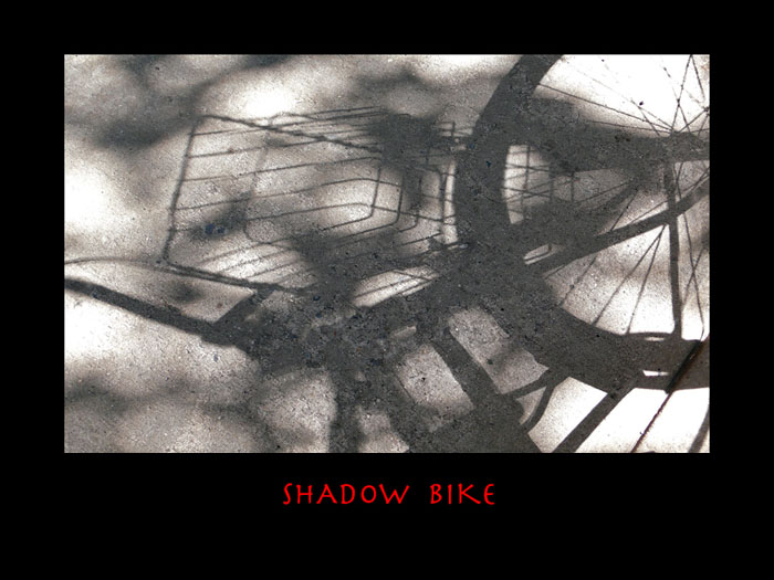 4.37-shadow_bike