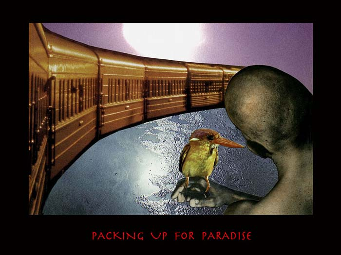 packing_up_for_paradise